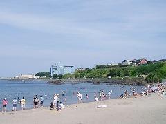 蕪島の海水浴客